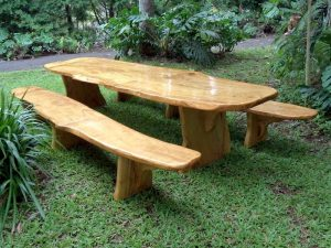 Luau Table and Benches 12' Long